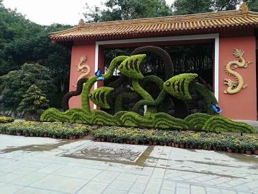 绿雕造型设计施工案例