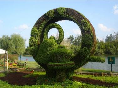 环形五色草造型