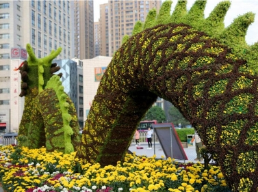 巨龙五色草造型