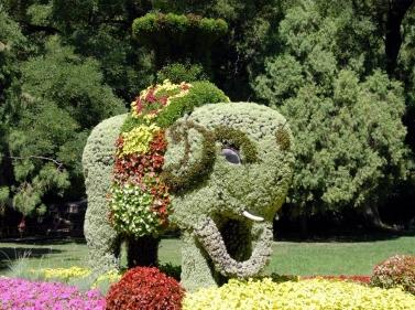 神象五色草造型